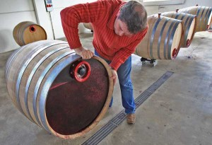 Juan Carlos rotating red wine in oak barrels